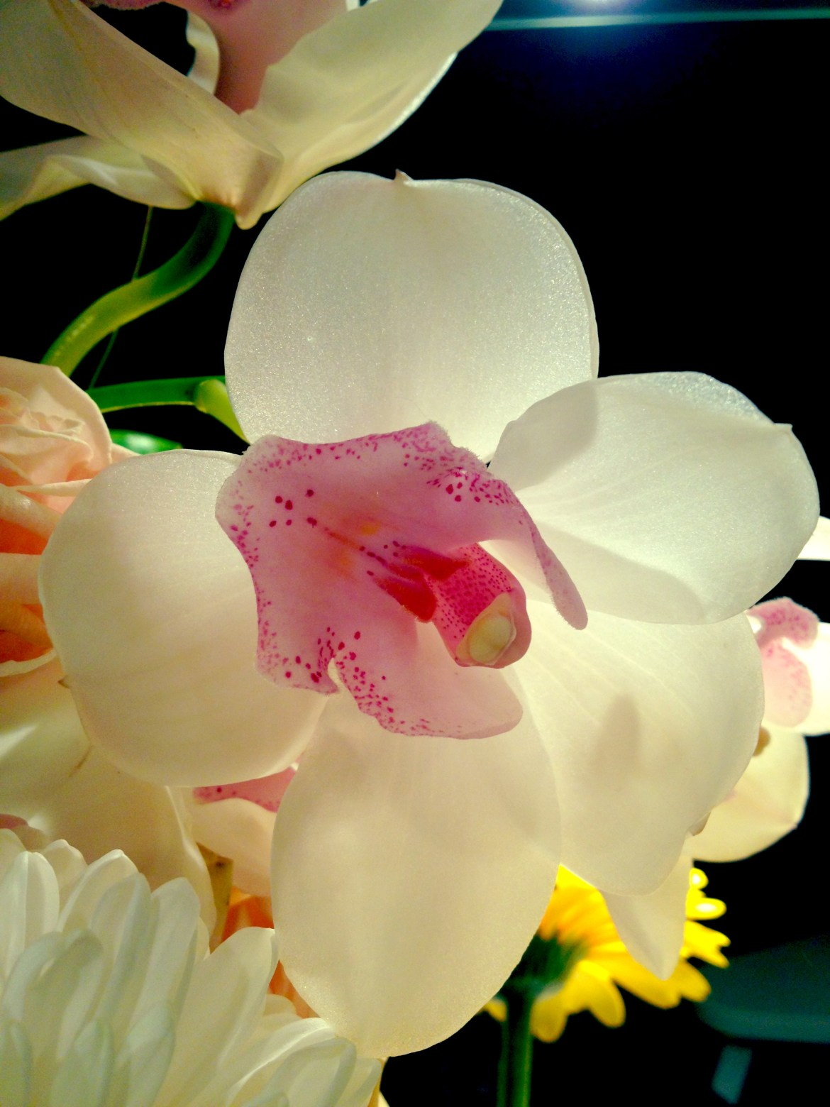 Orchids in Bouquet