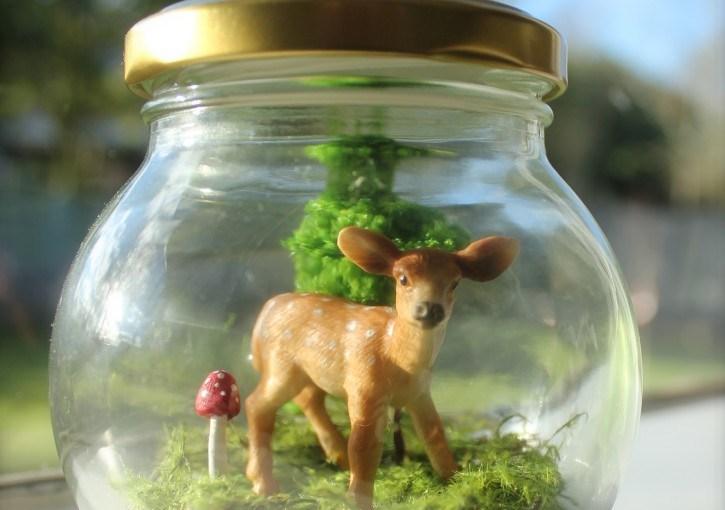 Deer in a Jar