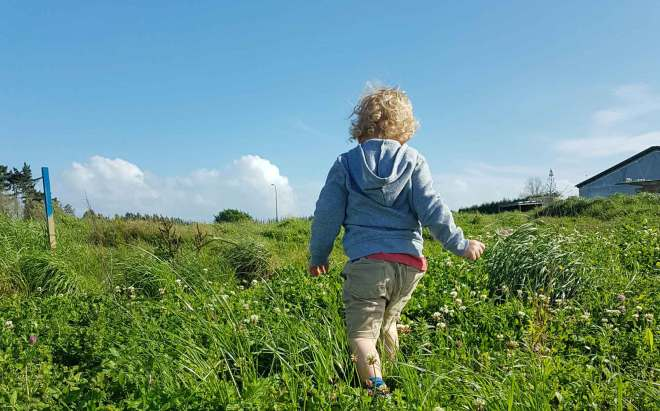 New Zealand's Top Mummy Blogger Parenting Travel Blog Family yarns Kiwi Kids