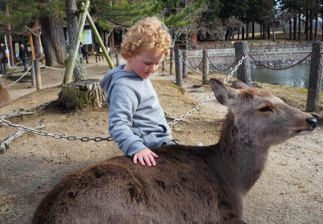 New Zealand's Top Mummy Blogger Parenting Travel Blog Family Japan Nara Park