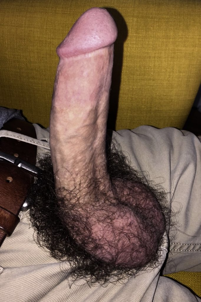 sacudo peludo