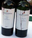 viniterra lineup.jpg