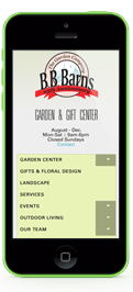 BB Barnes Mobile Web Design