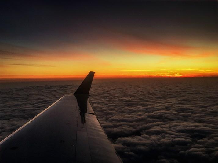 planewingsun