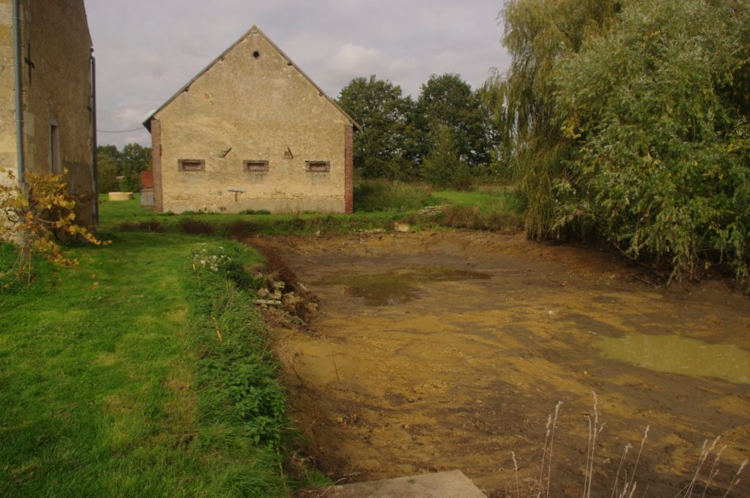 The cleaned out pond