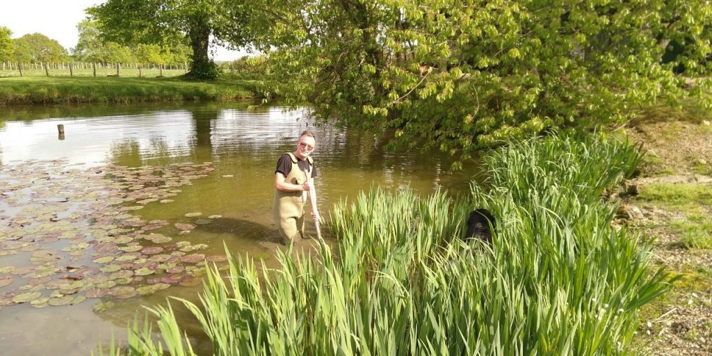 Scrumping for irises in the neighbours' pond