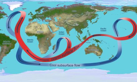 Slowdown of Atlantic conveyor belt could trigger 20 years of rapid global warming