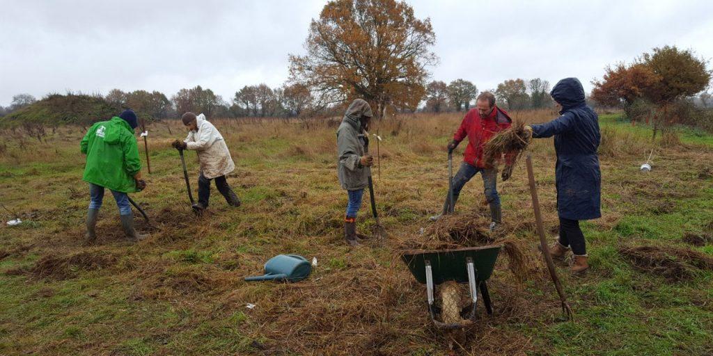 Tree planting at The Big Raise
