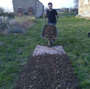 Grant planting potatoes