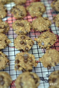 Peanut Butter Banana Chocolate Chip Oat Cookies