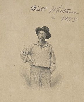 An 1855 image of Walt Whitman from Leaves of Grass. Courtesy Library of Congress.