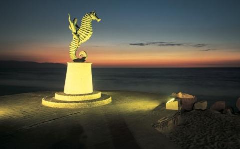 seahorse-night-puerto-vallarta