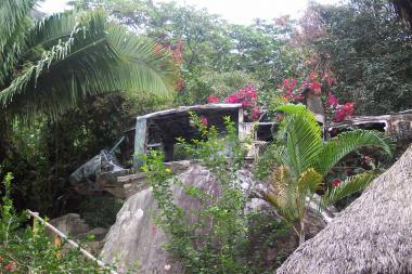 The Movie Predator Was Filmed Here In Puerto Vallarta