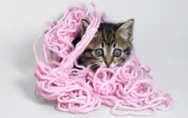 This cat is entangled. Whatever it does, the yarn does. Whatever happens to the yarn, happens to the cat.