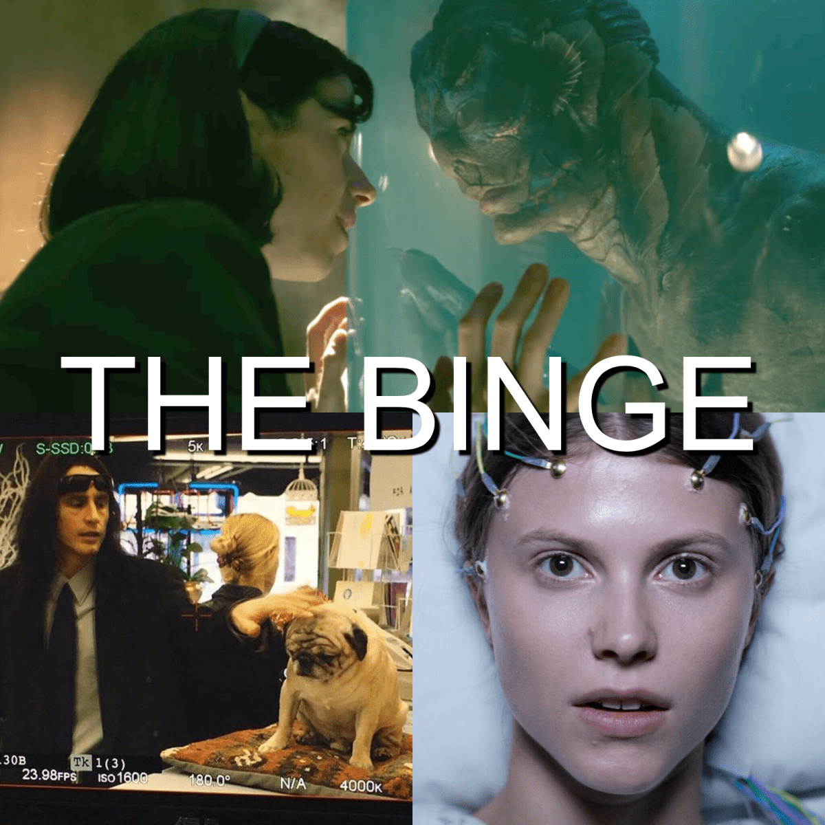 The Binge Movie Podcast: The Shape of Water | The Disaster Artist | Thelma