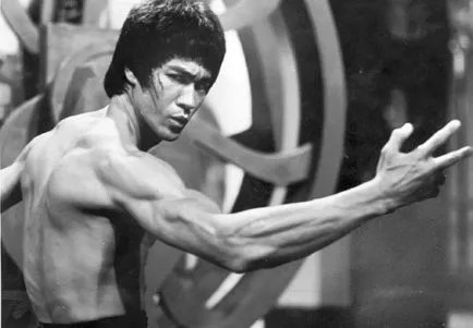 Bruce Lee MMA
