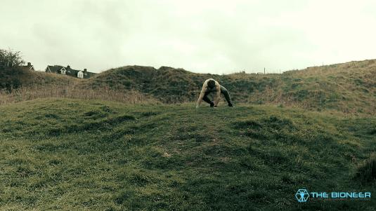 Ape Walk Travelling Moement