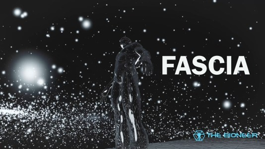 Human Fascia