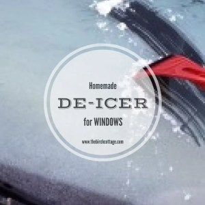 Homemade Windshield De-Icer