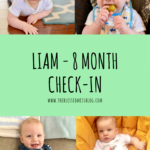 Liam – 8 month check-in