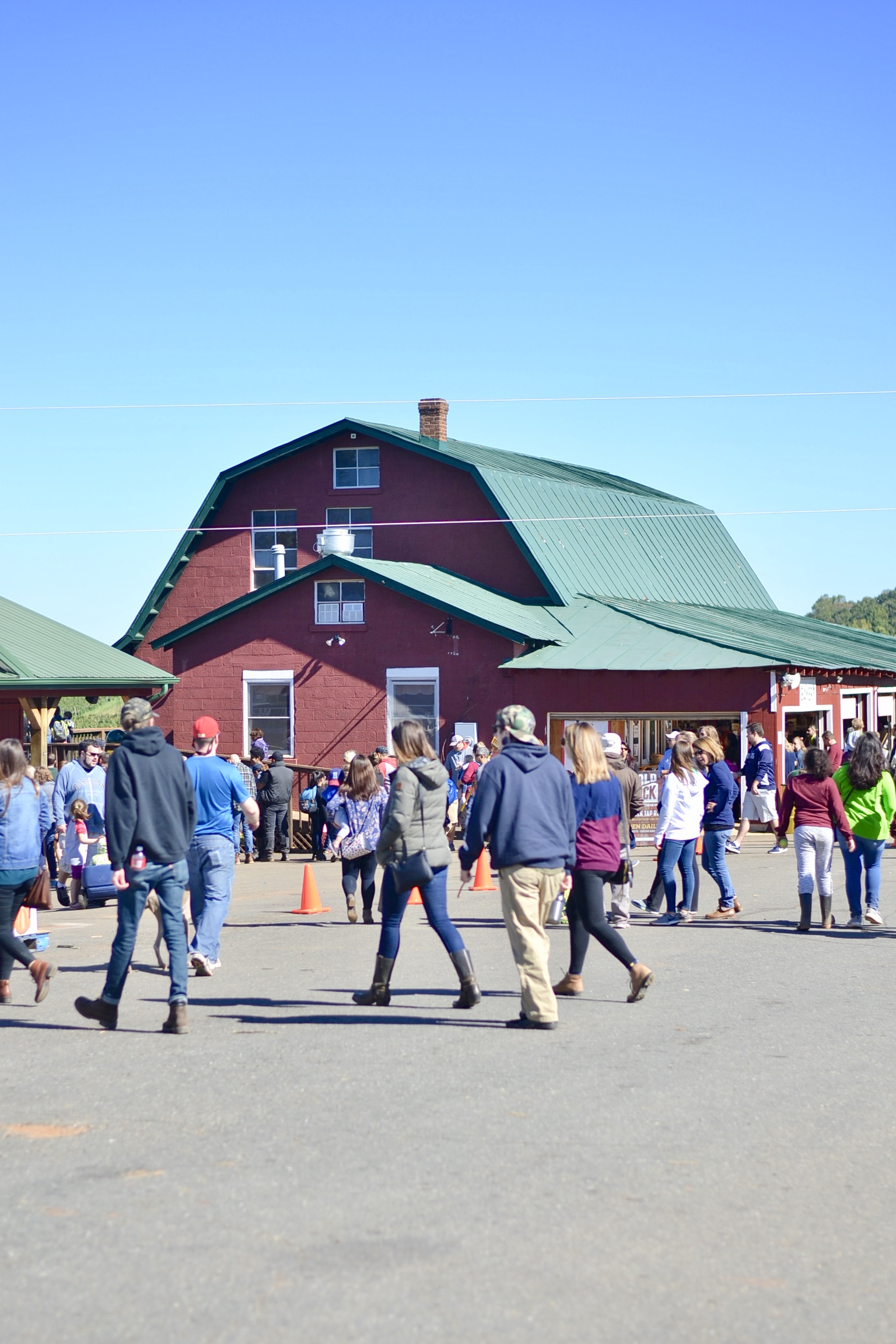 Annual Apple Picking Trip - Recap of our trip to our favorite apple orchard - The Blessed Mess - www.theblessedmessblog.com