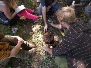 Observing soil structure