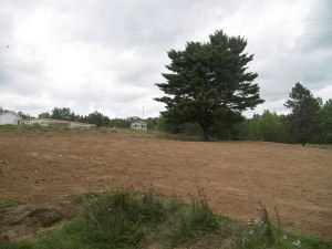 Huge septic field area, with the Tiny Studio, ready for windows and siding, and the Farmers' Market in the background