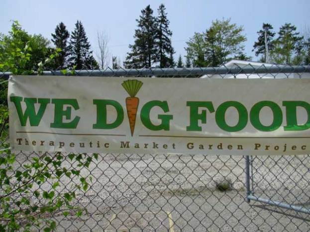 We Dig Food therapeutic garden