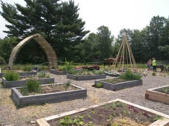 We Dig Food! garden