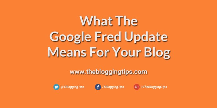 What-the-Google-Fred-Update-Means-For-Your-Blog