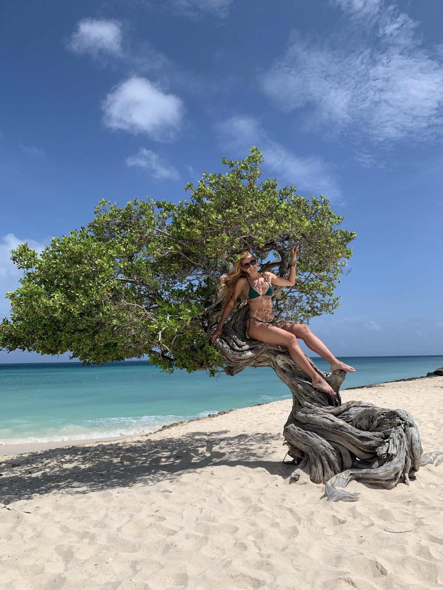 Woman in green bikini on top of a tree at the edge of the beach.