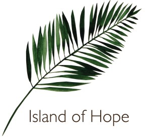 Island of Hope The Bloom Foundation pmad support group