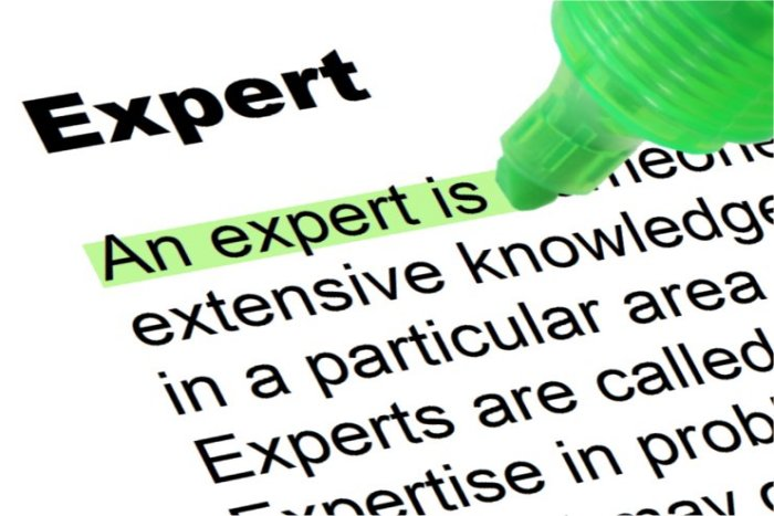Image result for expert