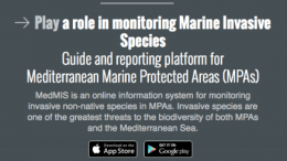A new IUCN app for identifying potentially invasive species