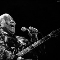 B.B. King - The Thrill Will Never Be Gone