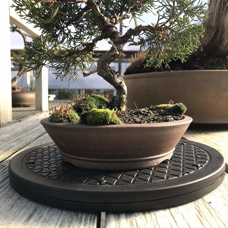 Bonsai Tree Plant Japanese Round Turntable 30cm