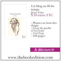 Le livre Un blog au fil du temps