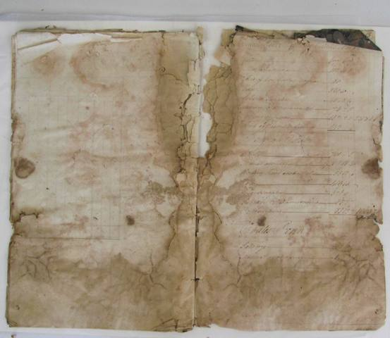 Damage to the folios due to damp and mould
