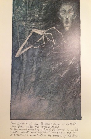 Spirit of the Birch