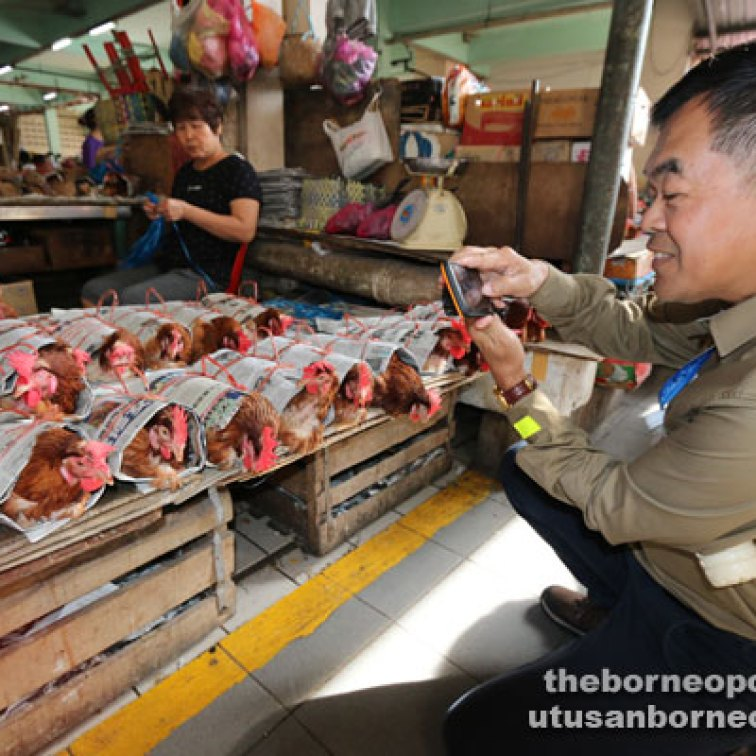 Leong takes a picture of live chickens at the Sibu Central Market.