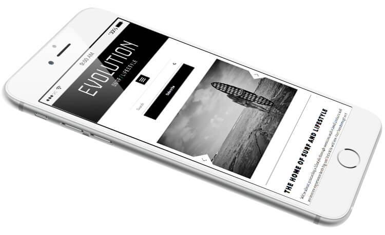 Evolution Mobile Responsive Website Image