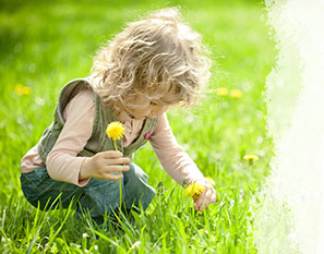 child picking flowers in a sunny field