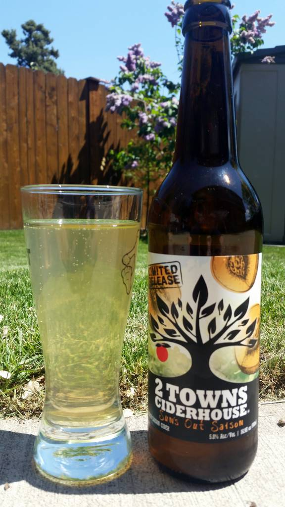 2 Towns Sun's Out Saison