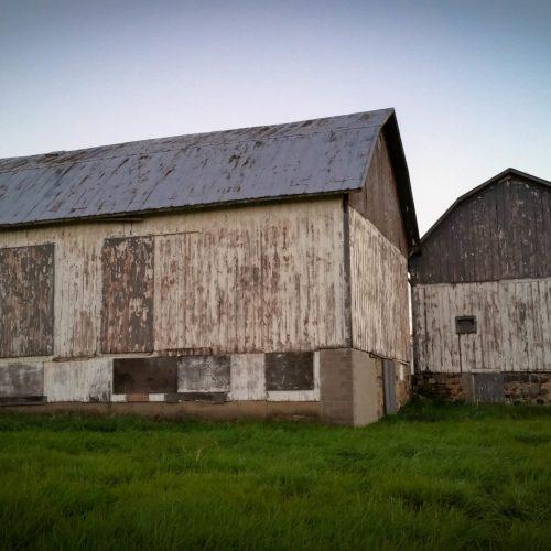 Briar Barns-24