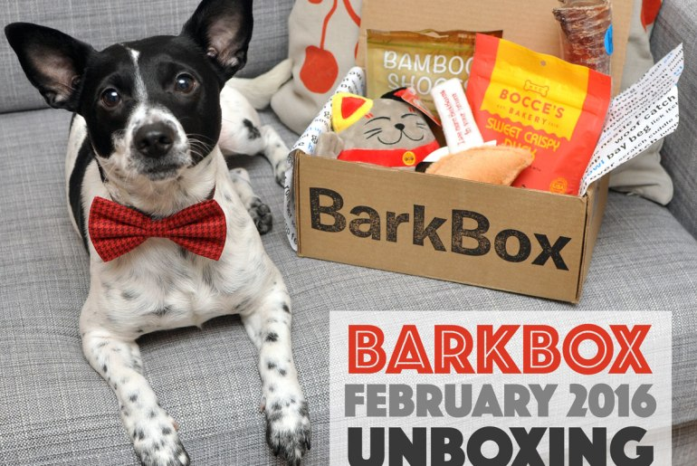 """Henry and I unbox the February 2016 """"Happy Lunar New Year!"""" BarkBox! Use code HENRYTHENUGGET to add a free box to any new BarkBox plan - even a one-month plan!"""