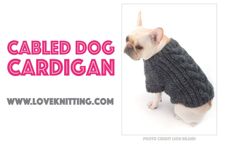 Seven Free Dog Sweater Patterns The Broke Dog