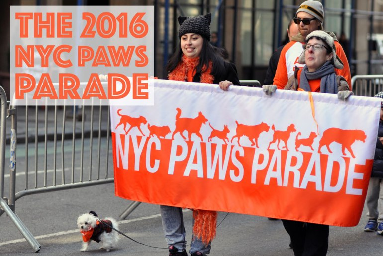 Hundreds of attendees (both animal and human) came out to celebrate the ASPCA's 150th anniversary by partaking in the first NYC Paws Parade!