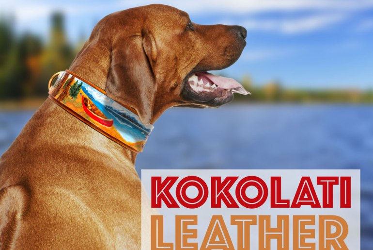 Right after high school, Mary Esposito became physically disabled and legally blind. Unsure what the future held, she started working with Riley, her service dog. To celebrate his graduation, she made him a leather collar — and KoKoLati Leather was born!