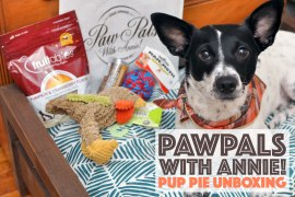"It's back! You may remember our PawPals With Annie! reviews from May and June and are wondering what's in the newest boxes. Keep reading to see what we received in this November's ""Pup Pie"" shipment and learn how to save 10% on your own subscription!"