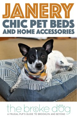Inspired by a love of interior design and the need for a waterproof dog bed, Jane Pearson launched Janery and started selling chic, practical pet beds. Janery beds are durable, stylish, and made in the USA.